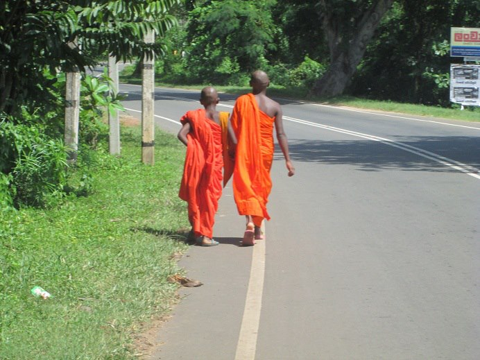 Going down the road in Sri Lanka.