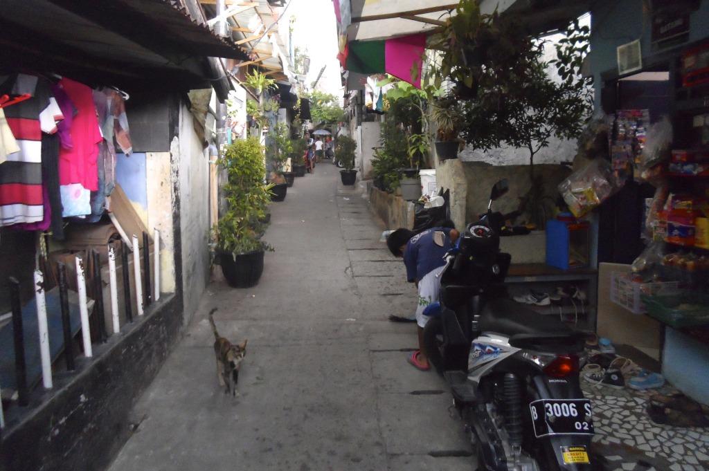 Quiet street in Jakarta.