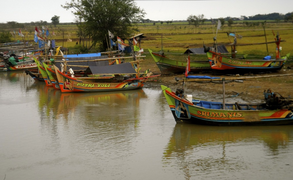 Indonesian boats.