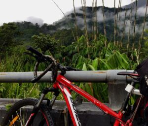 Cycling Cameron Highlands.