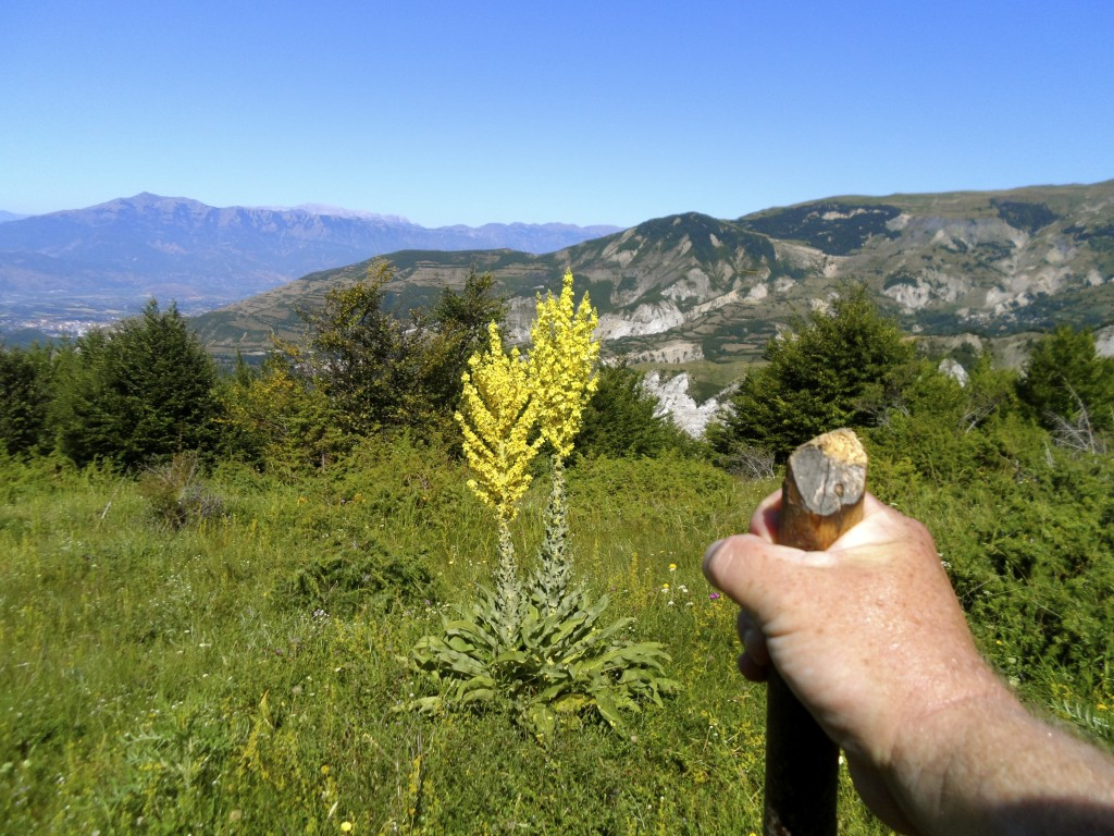 Hiking in Albania rocks.