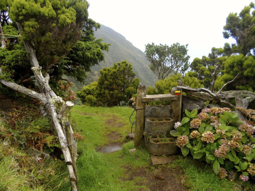 Hiking trail on Sao Jorge.