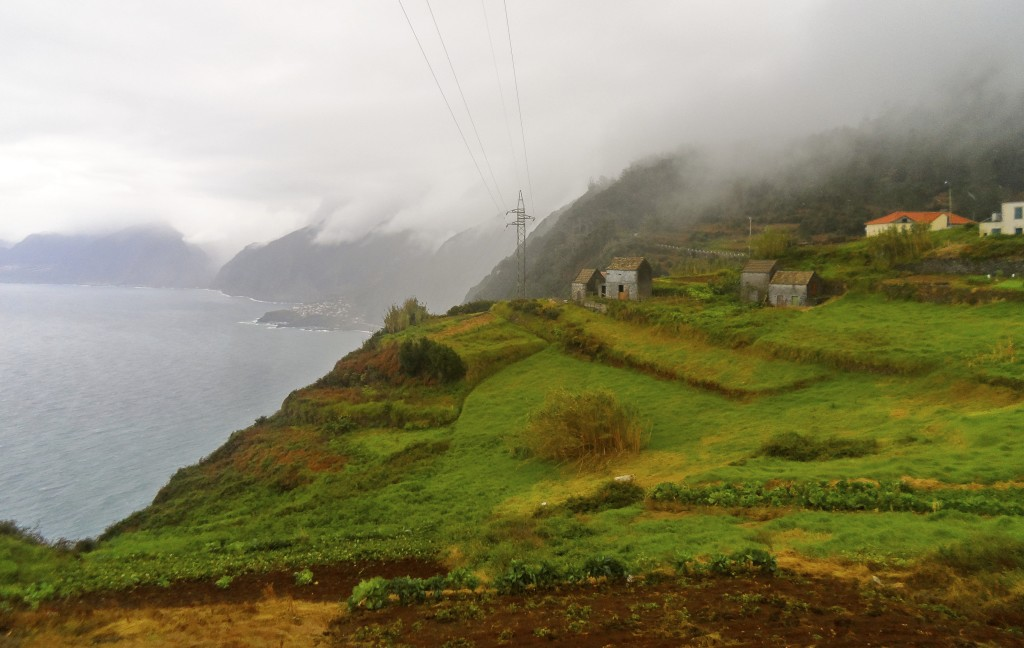 Farmland on the north coast of Madeira.