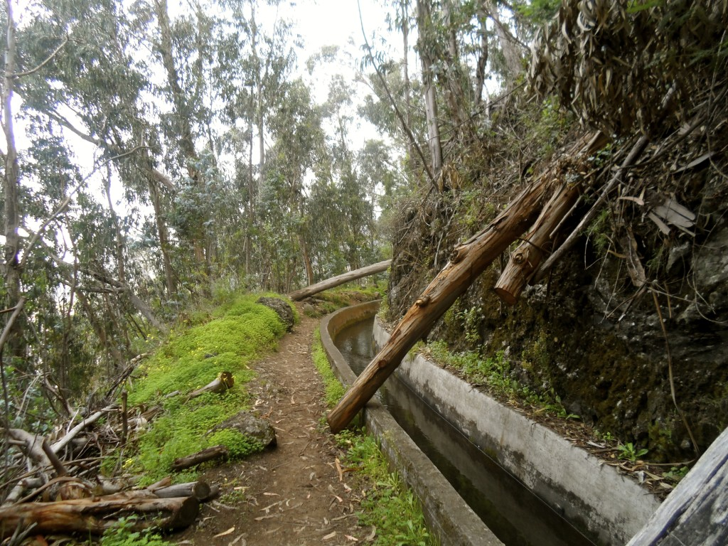 Walking along the levadas of Madeira.