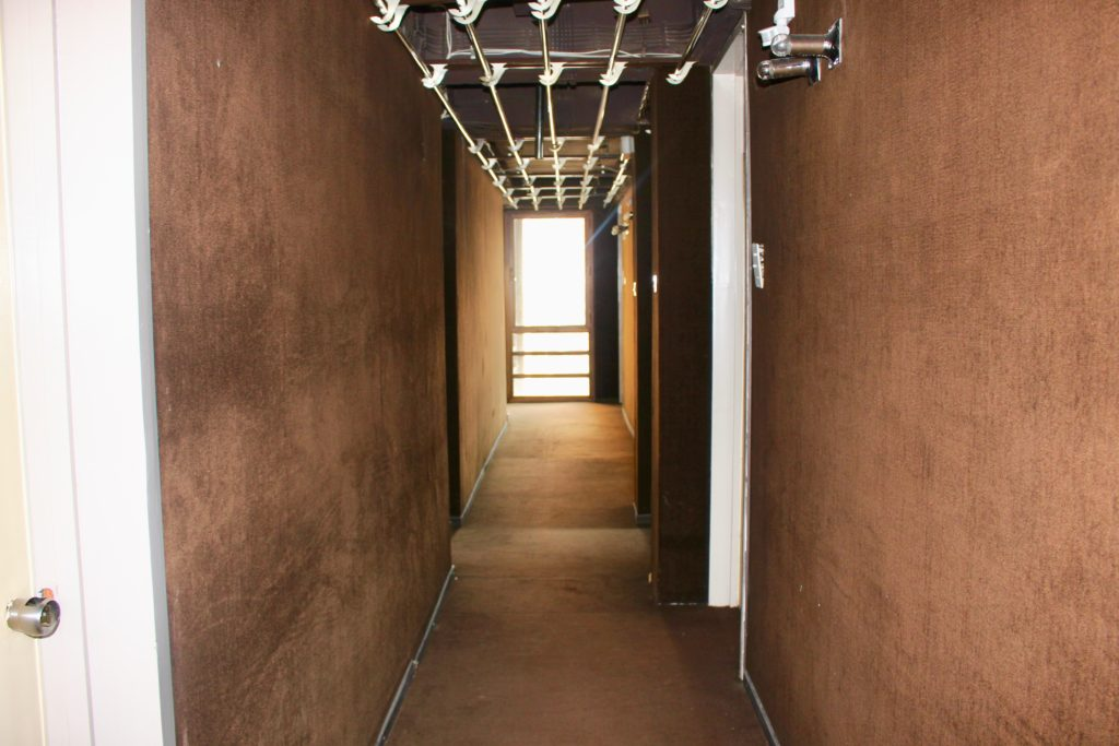 Brown wall carpet in the corridors.