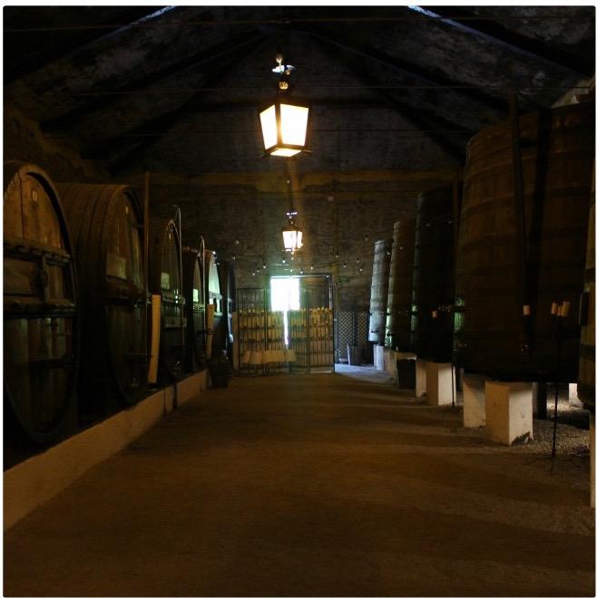 Inside a Portwine cellar.