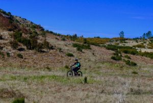 Mountain biking Madeira.