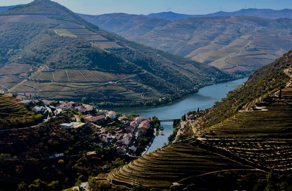 The Douro Valley is a nice place to work.