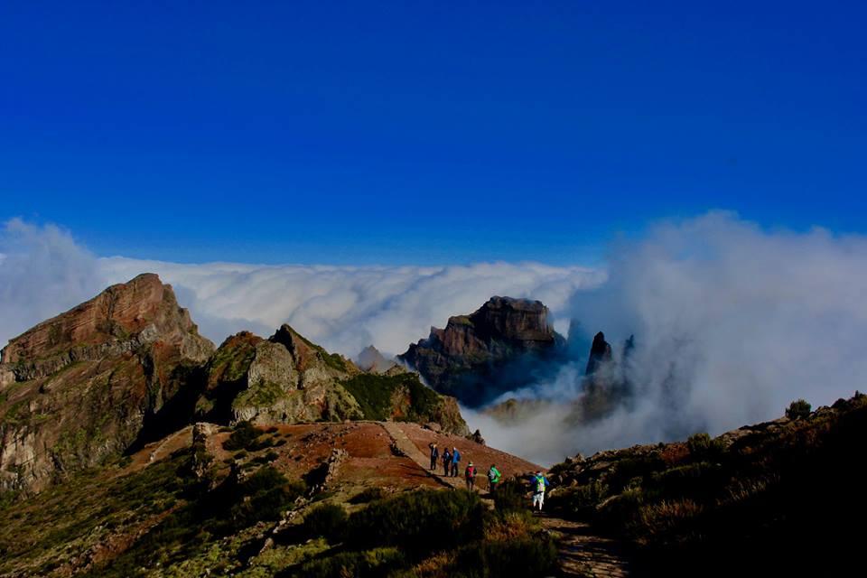 Madeira is always wonderful.