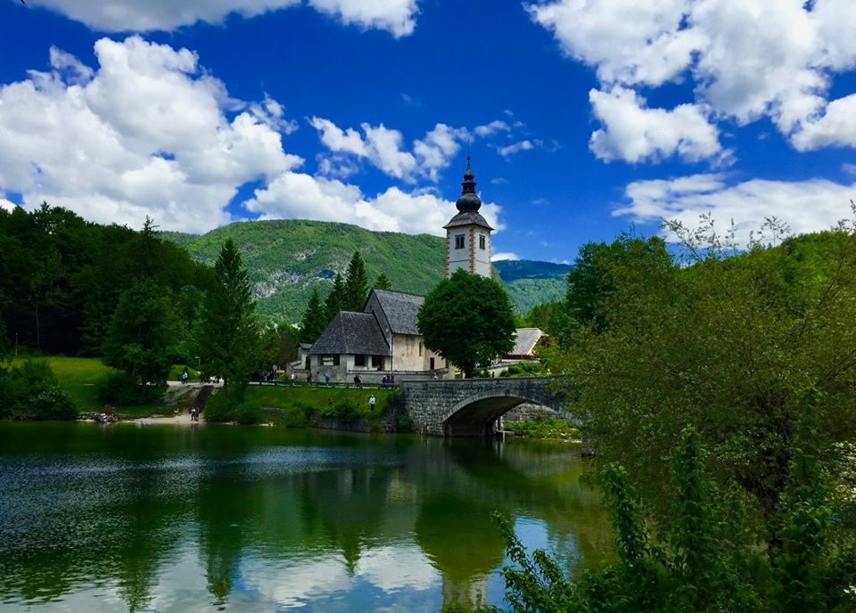 Bridge Bohinj