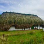 Eelgrass house Læsø.